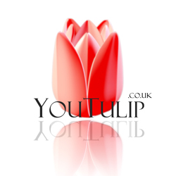 YouTulip Flower Bulbs